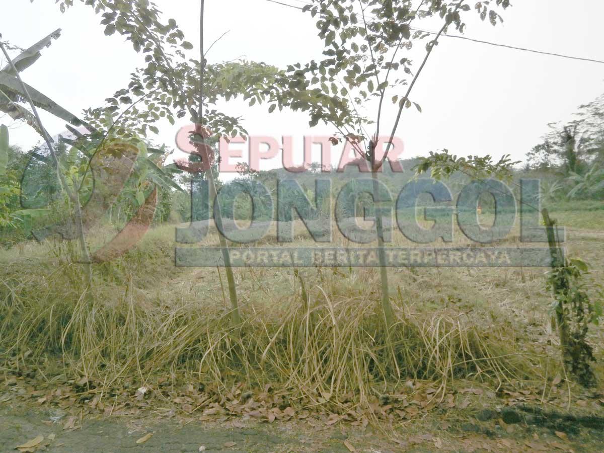 Kekeringan Paksa Warga Jonggol Ambil Air Sungai